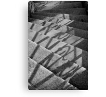 a cunning case of curvature Canvas Print