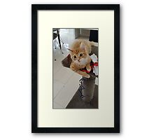 I LOVE PLAYING WITH MY TOY...... Framed Print