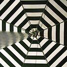 garden umbrella by Bimal Tailor