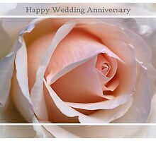 Happy Wedding Anniversary Soft Rose by Joy Watson