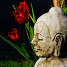 Springtime for Buddha by Kurt  Tutschek