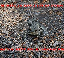 You have To Kiss A Lot Of Toads by Malcolm Snook