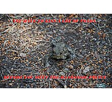 You have To Kiss A Lot Of Toads Photographic Print