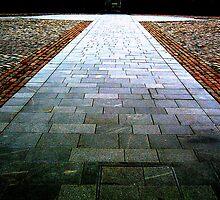 Path by Sharon Brady
