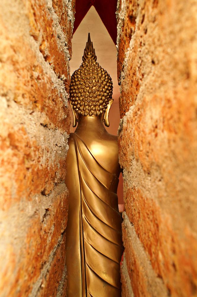 Buddha Through The Crack by Robert George