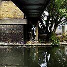 Troll under the bridge by Paul O'Neill