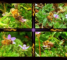 Busy Bees by Glenna Walker