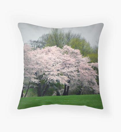 Locust Valley, NY Throw Pillow