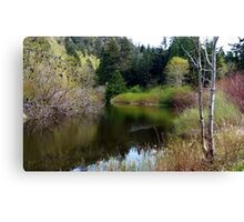 On San Juan Pond Two Canvas Print