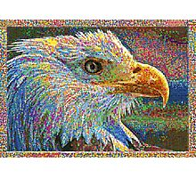 Colorful Bald Eagle Photographic Print