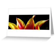Tulip Tips Greeting Card