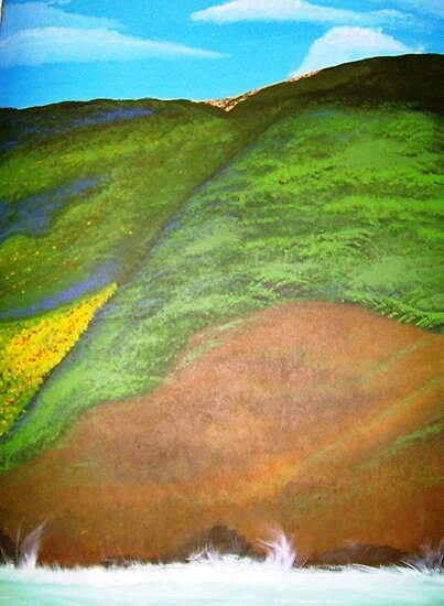 the marin headlands a view from san francisco feb 1993 by amy leader