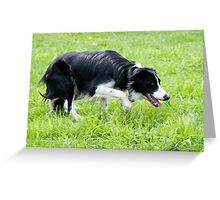 Stealth Mode Greeting Card
