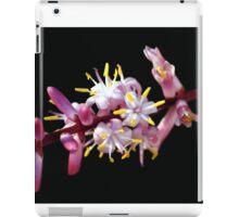 INDIAN PAINTBRUSH iPad Case/Skin