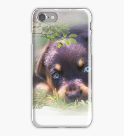 Aqua - Mug iPhone Case/Skin