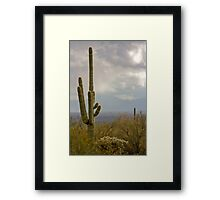 Rainstorm Near Tucson Framed Print