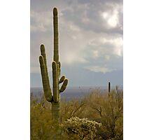 Rainstorm Near Tucson Photographic Print