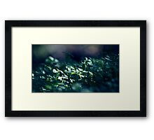 A magic trick... Framed Print