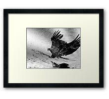 Wings Of Fury Framed Print