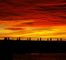 red sky in the morning shepherds warning  by janfoster