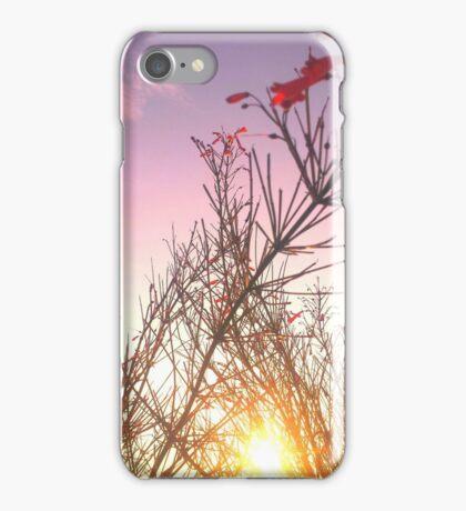 Earth & Sky iPhone Case/Skin