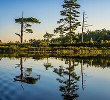 Kejimkujik Dawn by mlphoto