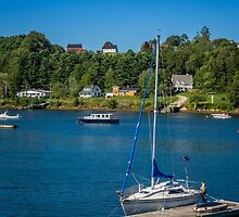 Oakland from Mahone Bay by mlphoto