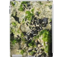 Mussels by the Sea iPad Case/Skin