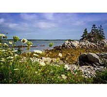 Pleasant Point Beach Photographic Print