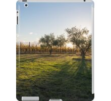 Vines in the afternoon light iPad Case/Skin