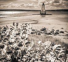 Sandy Point Lighthouse by mlphoto