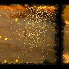 Pinpricks of gold by hillsrain
