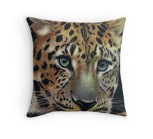 Eyes of Steel Throw Pillow