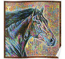 Colorful Head Horse Poster