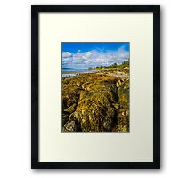 Seaweed on the Beach Framed Print