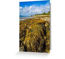 Seaweed on the Beach Greeting Card