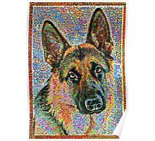 Colorful German Shepherd Poster