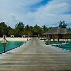 Maldives by John Samson