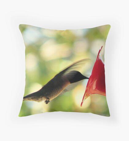 Hummingbird Dances Throw Pillow