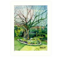 Spring time apple tree Art Print