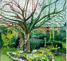 Spring time apple tree by doatley