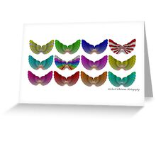 Colorful Foot Wings Greeting Card