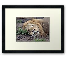 It Was A Long Night Of Drinking and Smoking Framed Print