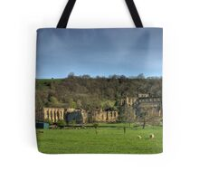 The Abbey Ruins Tote Bag