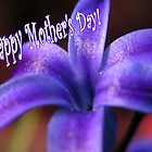 Purple Hyacinth Happy Mohter's Day by mnkreations