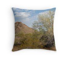 Arizona West Throw Pillow