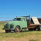 OLD Desert Truck by Diane Trummer Sullivan