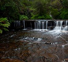 Upper Wentworth Falls, Blue Mountains by Matt  Lauder