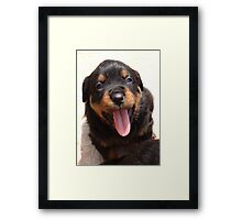 Say Aaaggghh Framed Print