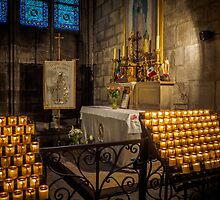 Notre Dame Cathedral by mlphoto